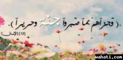 thumb_wahati_1367416474__734448_55343623