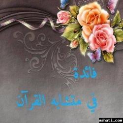 thumb_wahati_1444559295__10592905_282688