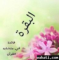 thumb_wahati_1445508315__10603504_275953