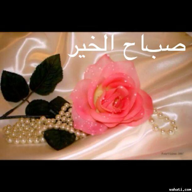 wahati_1429113027__20150410011252.jpg