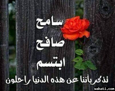 wahati_1430416939__11203201_160184786009